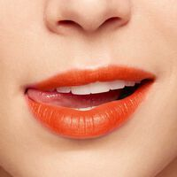 Waterlip Lip Stain
